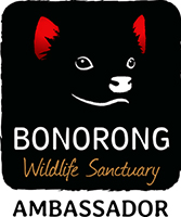 Bonorong Wildlife Sanctuary Ambassador